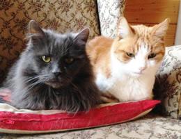 Jasper and Jim