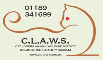 New Logo with telephone number